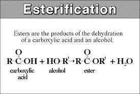 Here we see a diagram showing how acids are decarboxylated into esters.